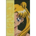 Sailor Moon Amarillo