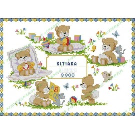 Birth Record - Baby Bears