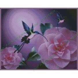 Colibries en Flores