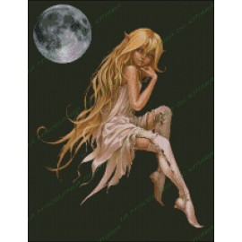 Elfa Nocturna