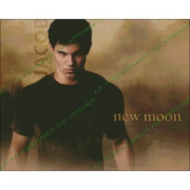 Jacob Black - Luna Nueva