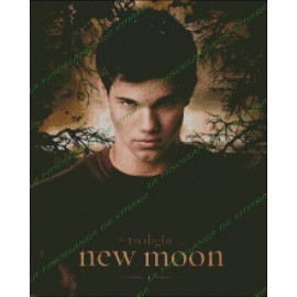 Jacob Black - New Moon 2