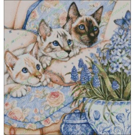 Gatitos Siameses con Lilas