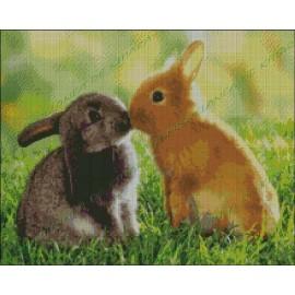 Amor de Conejos
