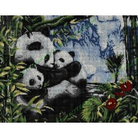 Family pandas