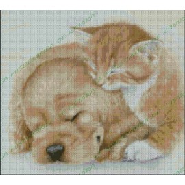 Puppy and kitten asleep