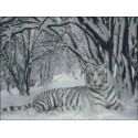 Tigre Nevado